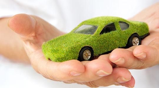vozim-zeleno